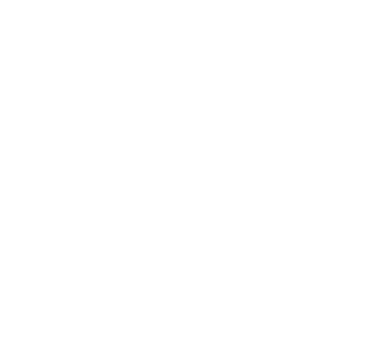 American Advertising Awards - 2020 Winner - Logo